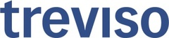 Logo Treviso Revisions AG