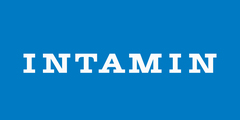 Logo Intamin
